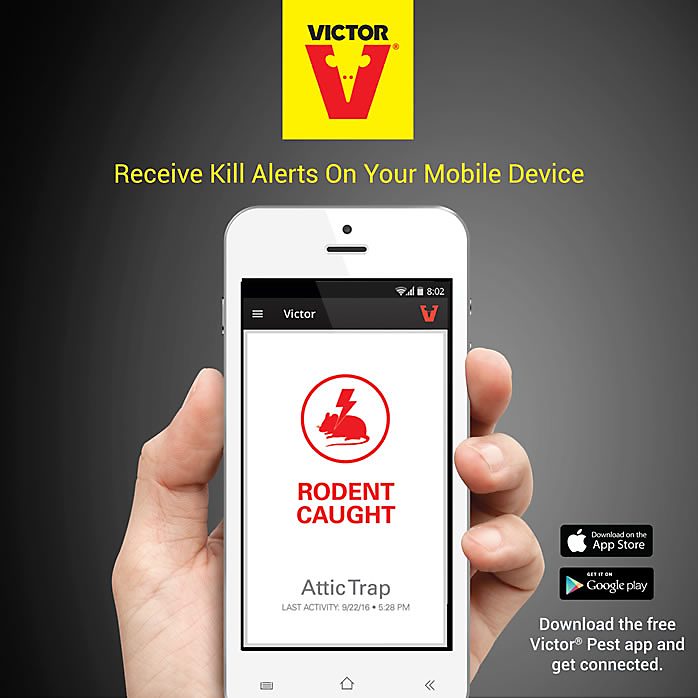 gratis varor app