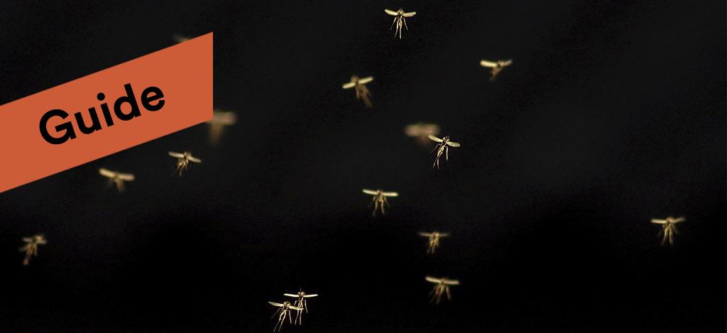 Usel sommar for mygg sniglar och getingar
